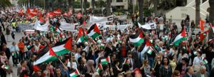 palestine-solidarity