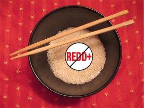 No-REDD-Rice-2-web